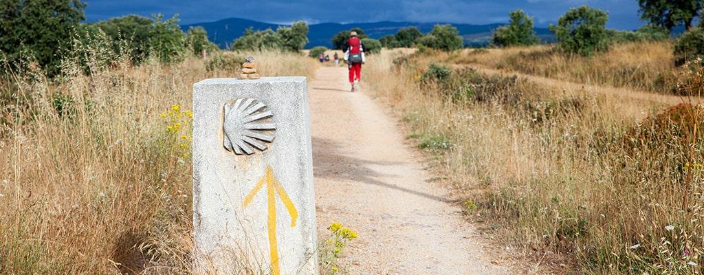 Cómo llegar a la Ruta Camino de Santiago